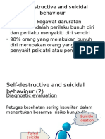 Self-Destructive and Suicidal Behaviour Diagnostic Evaluation