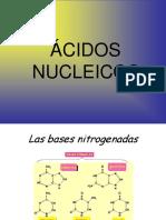 acidos nucleicos iessierrasur