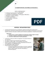 03 Funciones de Un Servicio de Anatomia Patologica
