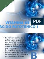 vitamina_b5