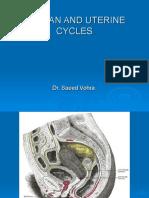 02-Ovarian & Uterine Cycles
