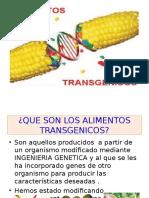 ALIMENTOS TRANSGENICOS 1D