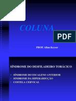 COLUNA 1