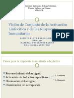 Vision de Conjunto de La Activacion Linfocitica y