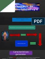 Mecanismos de Hipersensibilidad I y II - Copy