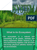 What is an Ecosystem 007
