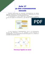 Biologia - Aula 17 - Heranca dos Cromossomos