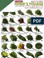 Alice Florist Designer's Foliage Catalog