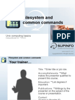 Linux Filesystem and Common Commands