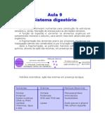 Biologia - Aula 09 - Sistema Digestório
