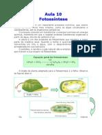 Biologia - Aula 10 - Fotossíntese