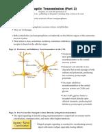 Synaptic Transmission p2 (1)