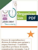 presentación mario organización