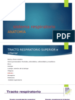 sistema respiratorio1.pptx