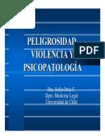 Peligrosidad y Violencia
