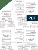 Mapa Conceptual Del Desarrollo Moral