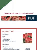 Carne y Derivados