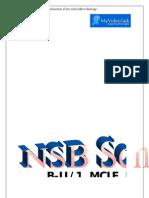 Sssummer Internship 4 nsb