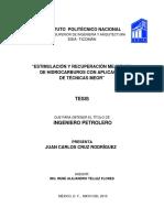 Estimulación y Recuperación Mejorada de Hidrocarburos Con Aplicación de Técnicas Meor