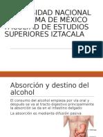 Metabolismo de Alcohol