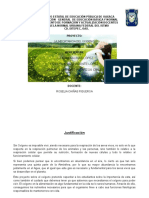 proyecto didactico OXIGENO