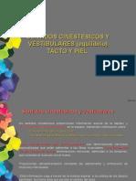 Sentidos Vestibulares