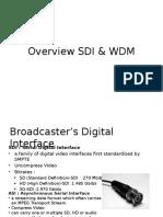 Overview Sdi