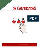 Libro de cantidades - hasta 9.pdf