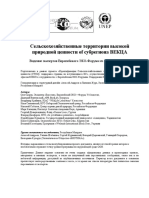 HNVFVision rus.pdf