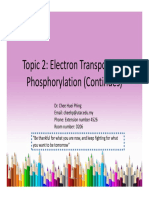 Lecture 2 Part c Electron Transport and Phosphorylation