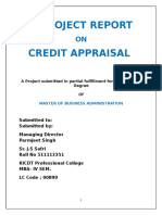 Project-credit Appraisal -Roll No.511113351