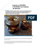 Elixirul Stravechi Cu USTUROI Macerat in VIN ROSU Care Trateaza Peste 100 de Afectiuni