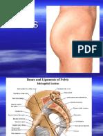 Pelvis, Atlas Organ Genitalia FemALE