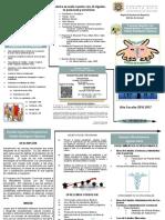 Opusculo Programa de Educacion Comercial 2015