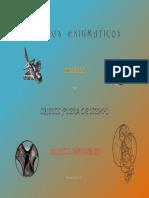 037 Objetos Enigmaticos 5D7