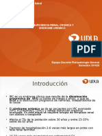 Insuficiencia Renal Cronica y Sindrome Uremico