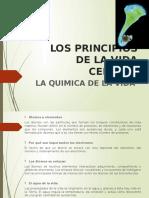 Los principios de la vida celular