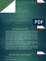 Sustentación Del Proyecto Final de Antenas y Propagación