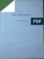 Que é Metafísica - Nota Do Tradutor