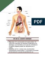 Ph en El Cuerpo Humano