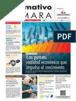 Informativo Camara 2015.pdf