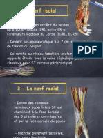 2016-5 DESC PAP ALR main - doigts 2ème partie