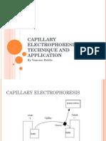 Capillary Electrophoresis Vanessa CHEM6200