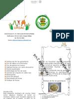 RECETARIO SAN 2014.docx