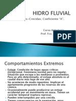 Hidro Fluvial Crecidas
