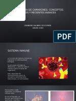 Inmunología de Camarones