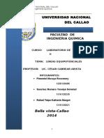 lineas equipotenciales(1).docx