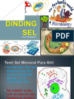 DINDING SEL.ppt