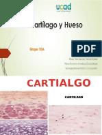 Cartilago y Hueso.pptx