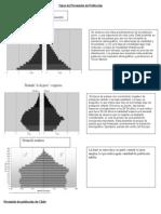 transparenciaTipos de Pirámides de Población